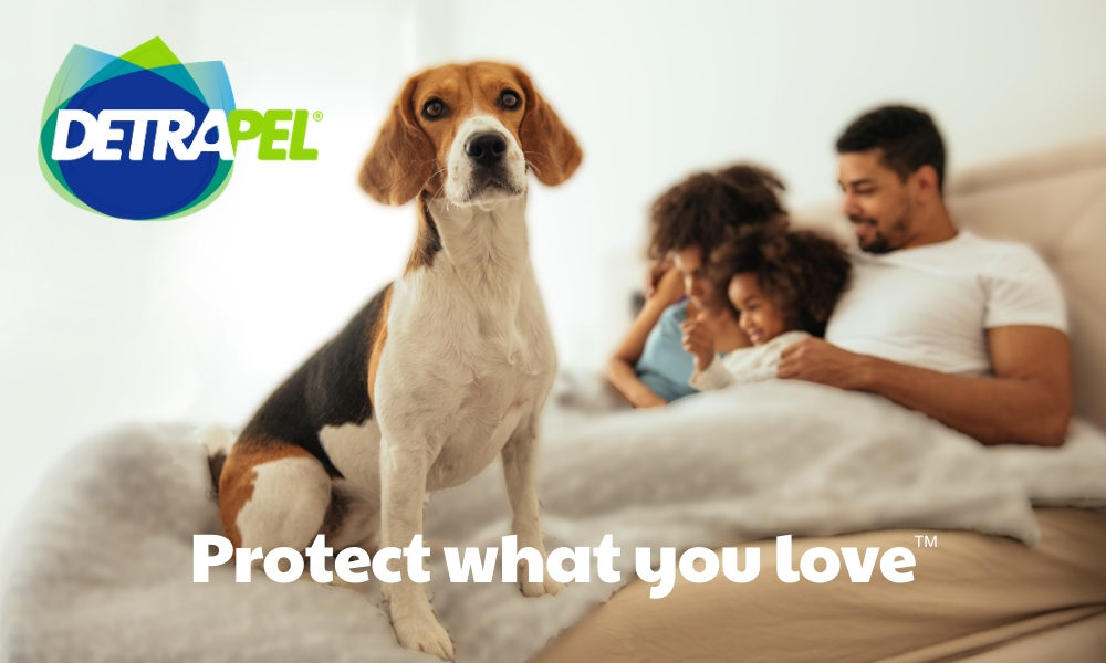 protect what you love, detrapel