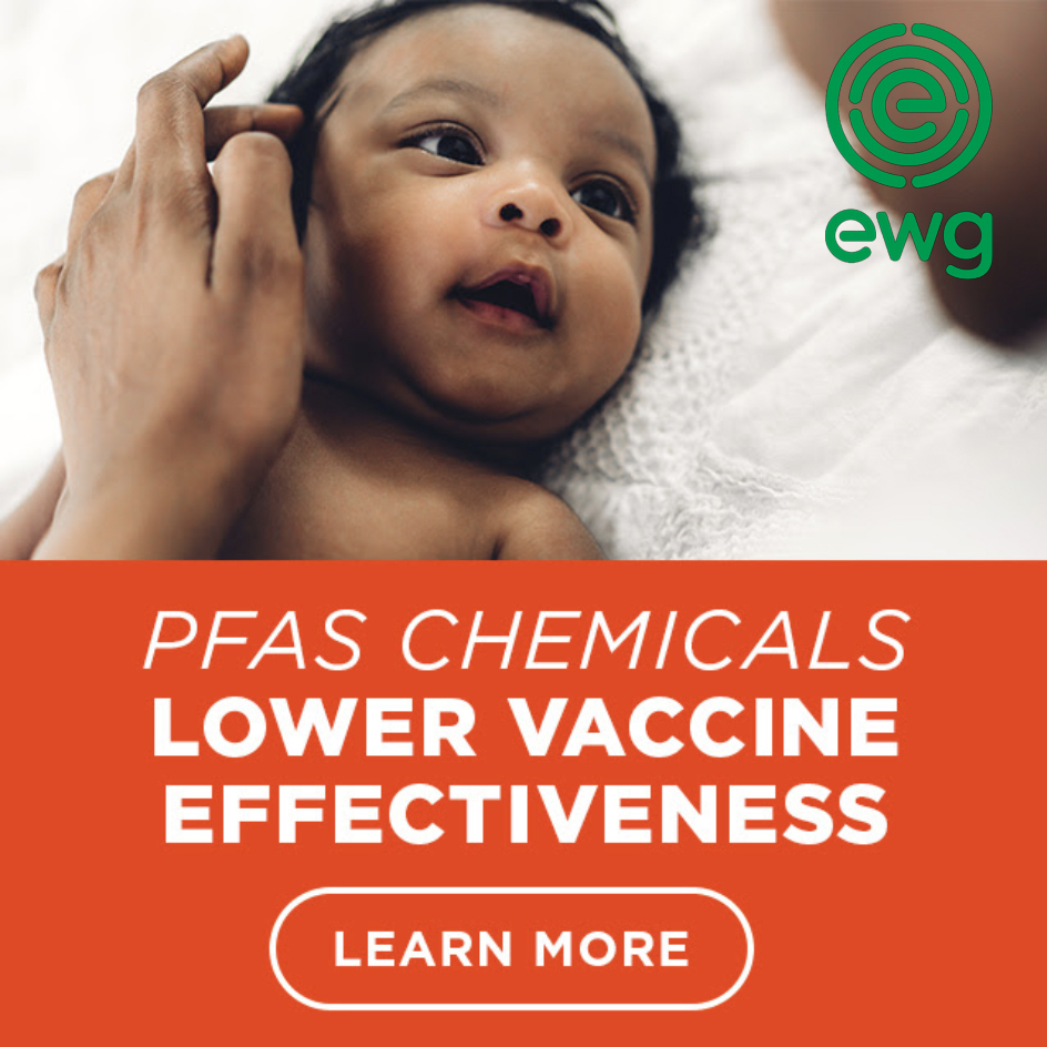 EWG PFAS chemicals Lower vaccine effectiveness