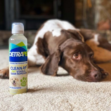 Clean AF Stain Remover - Pet stains